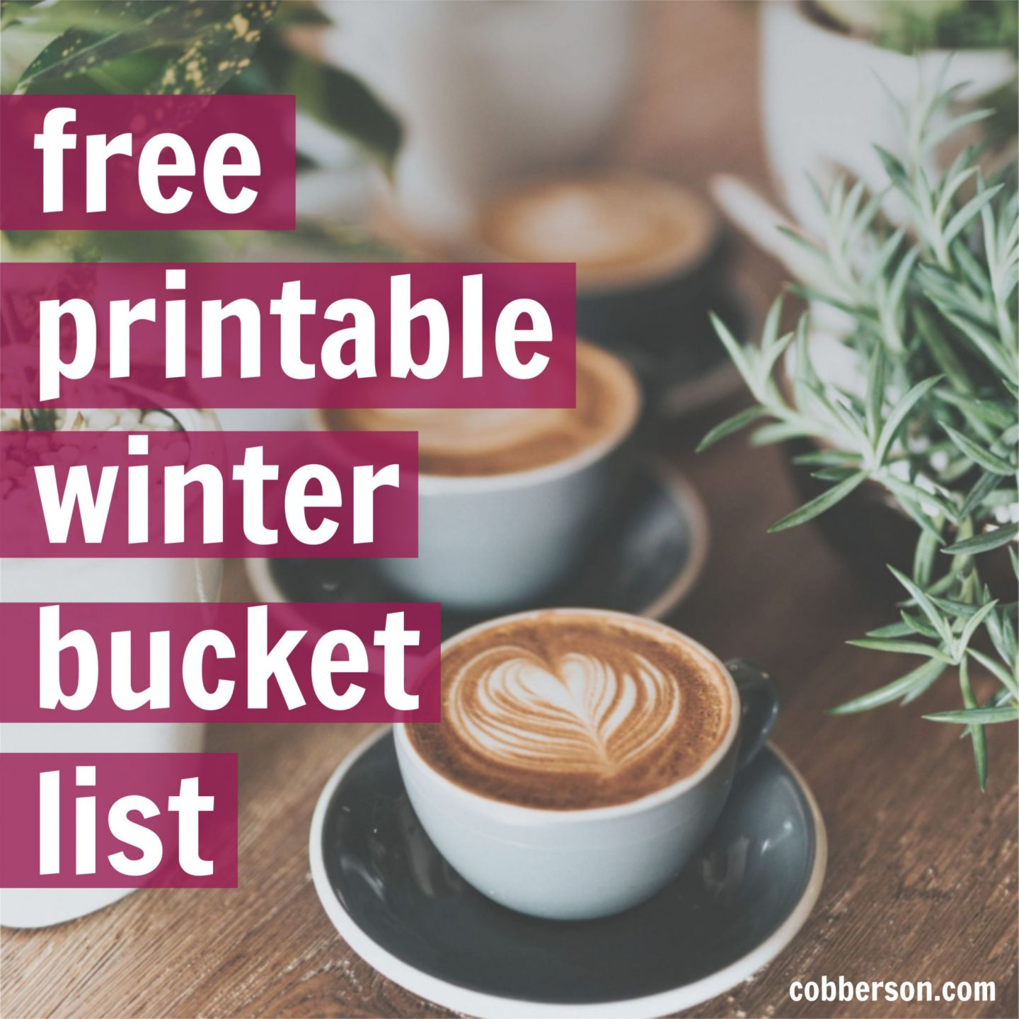 cobberson winter bucket list free printable