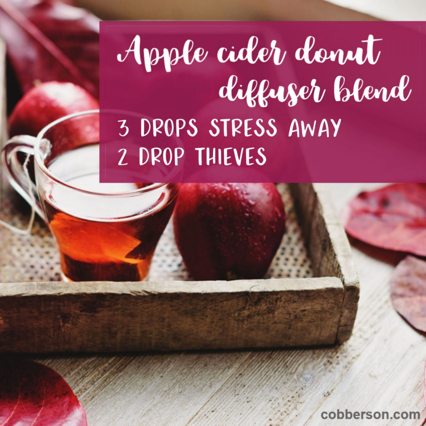 cobberson apple cider diffuser blend young living