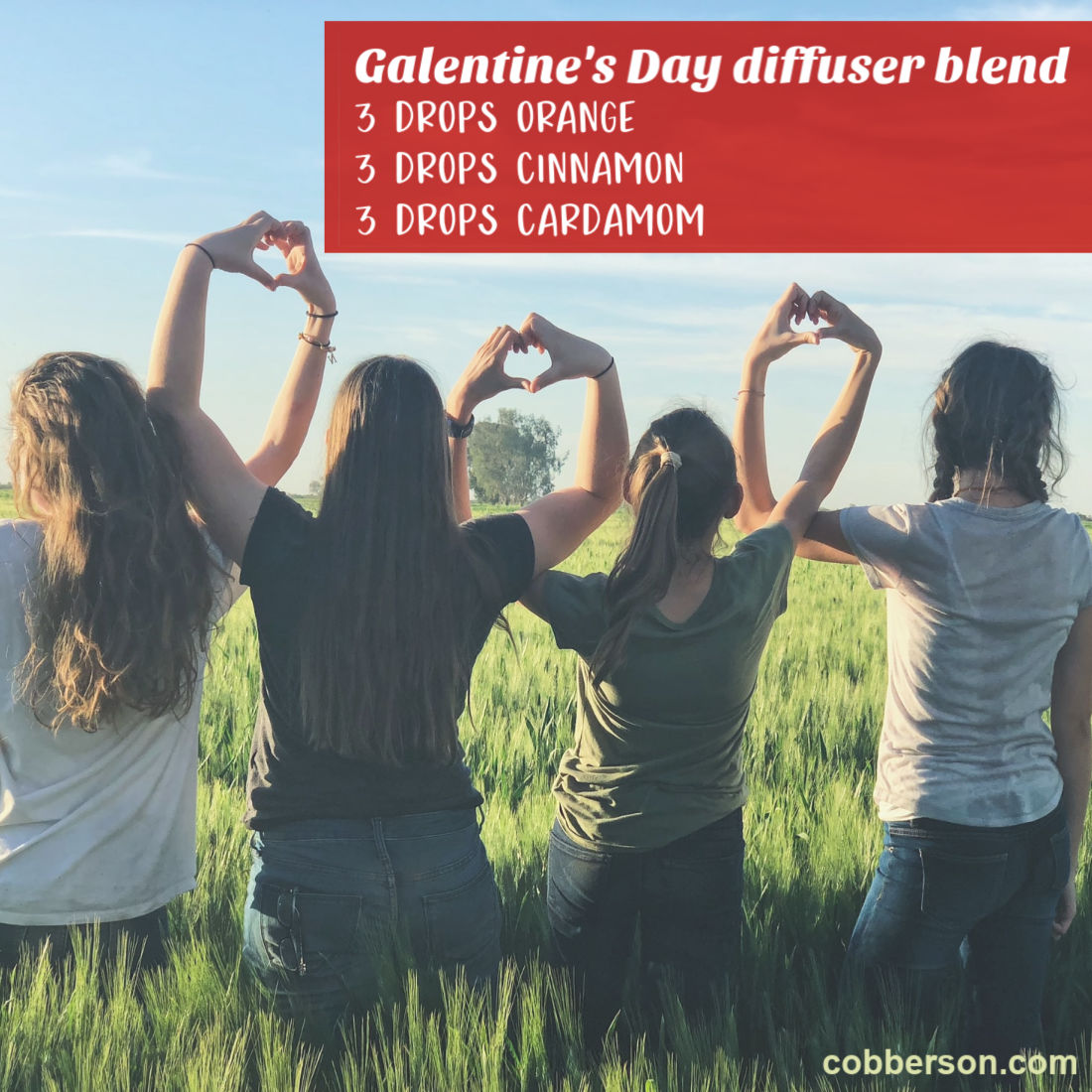 cobberson galentines day essential oils diffuser blend